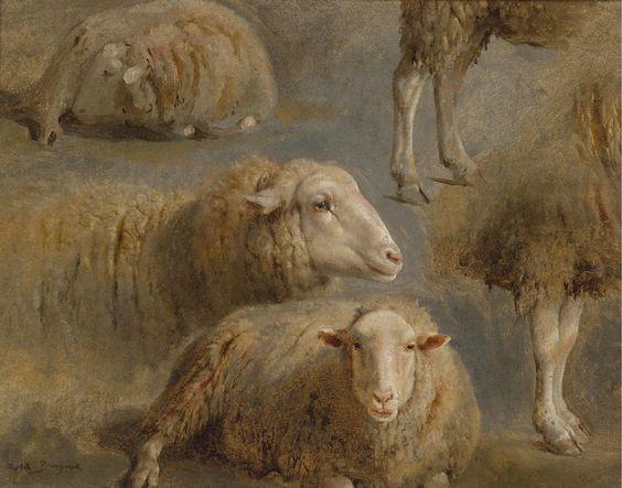 Rosa Bonheur - A Study of Sheep