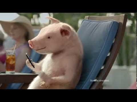 ▶ Boots and Pants Maxwell Pig - GEICO Commercial - YouTube