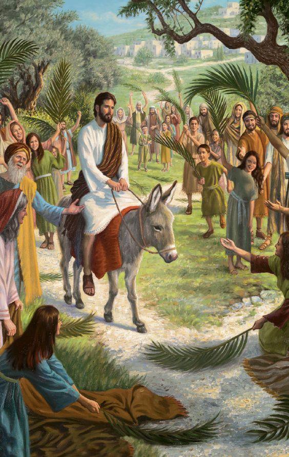 """LA ENTRADA TRIUNFAL EN JERUSALEN: Marcos 11:1-11  """"Ellos les respondieron tal como Jesús les había dicho, y les dieron permiso. Entonces trajeron el pollino a Jesús y echaron encima sus mantos, y Jesús se sentó sobre él. Y muchos tendieron sus mantos en el camino, y otros tendieron ramas que habían cortado de los campos...Marcos 11:6-8 ღ✟"""