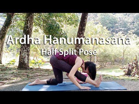 Ardha Hanumanasana Half Split Pose Yoganamaste Youtube Poses Splits Youtube