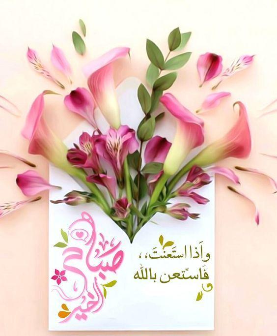 صور صباح ومساء أجمل صور صباح الخير ومساء الخير 2019 بفبوف Good Morning Images Flowers Beautiful Morning Messages Good Morning Wallpaper