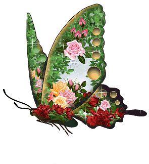 Mariposas | Dimensión Crisálida