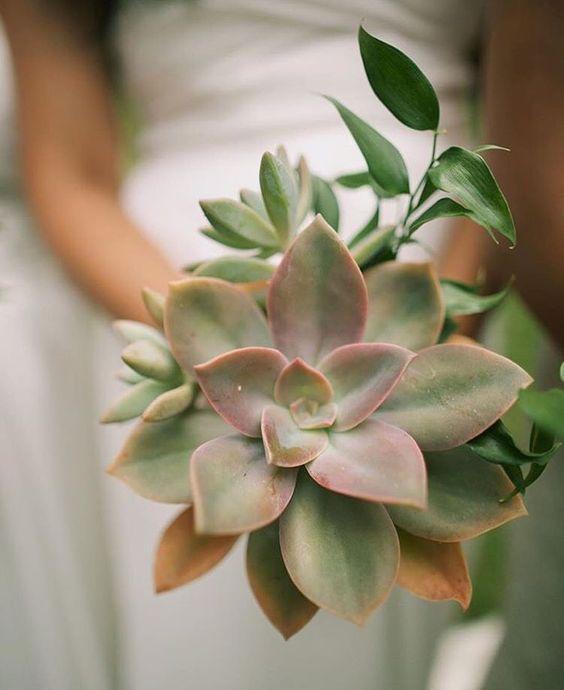 Succulent bouquet by Teresa Sena Design - Anna Kim Photography