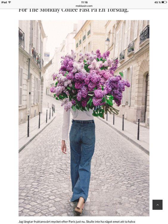 Lilacs 💞