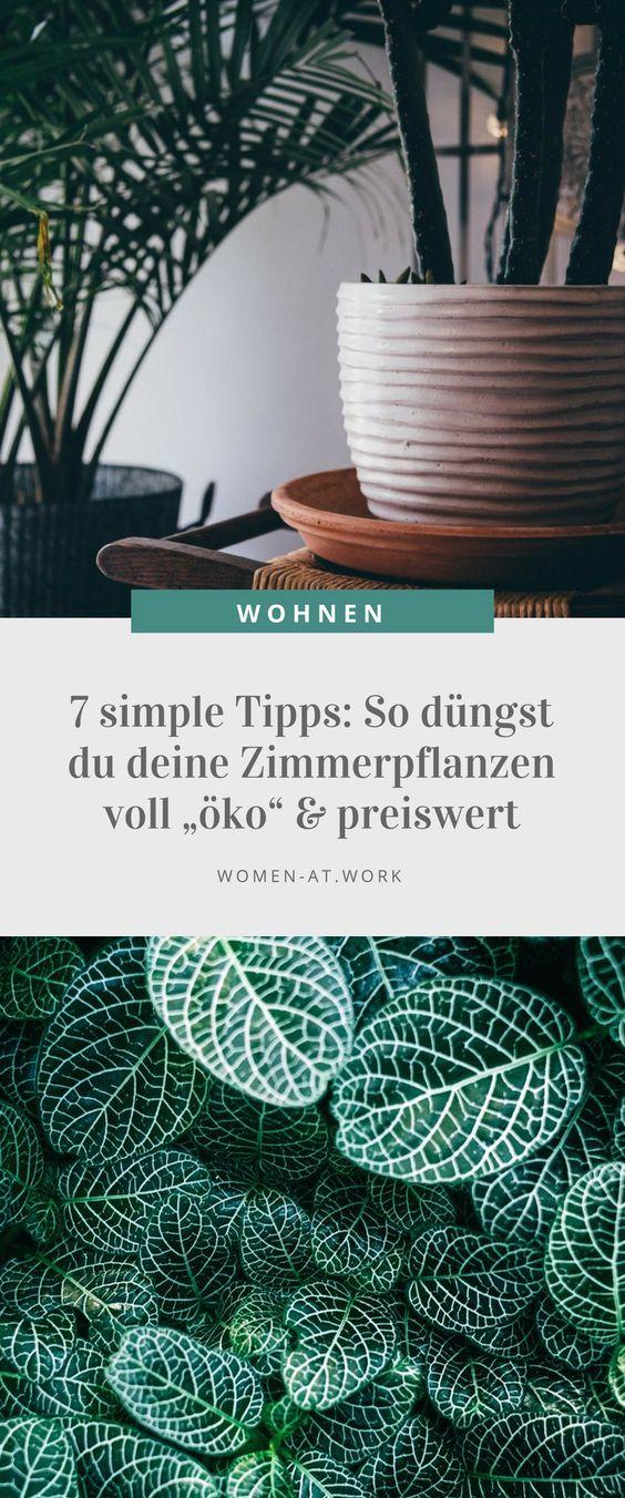 Wir Frauen lieben Zimmerpflanzen und umgeben uns entsprechend gern damit. Die Gründe sind einfach: 70 Prozent finden, dass sie entspannen, die Luft befeuchten (61 Prozent) und Schadstoffe aus der Luft filtern (56 Prozent). Und so düngst du deine  grünen Lieblinge besonders preiswert und auch noch vollkommen ökologisch: