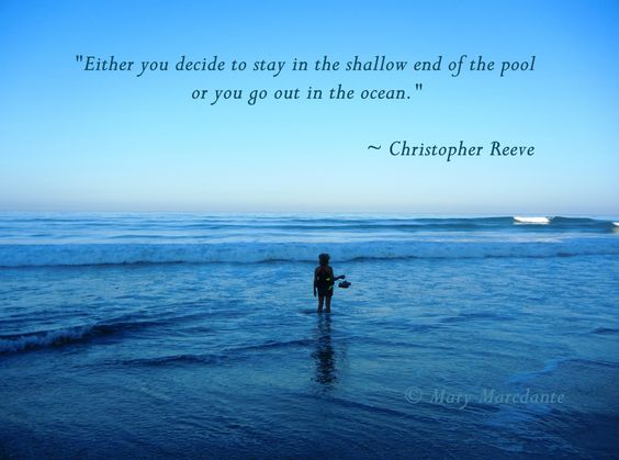 Quotes About Discovery Inspired By The Ocean: The Shallows, Shallow And Beach Quotes On Pinterest