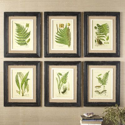 Birch Lane Frond Framed Prints & Reviews | Wayfair