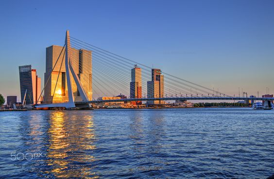 Erasmus Bridge at sunset, Rotterdam - HDR - HDR photo of Erasmus bridge and modern buildings illuminated by setting sun with beautiful reflection in the water. The photo was taken in Rotterdam, Netherlands
