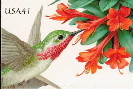 Calliope Hummingbird stamps - mainly images - gallery format
