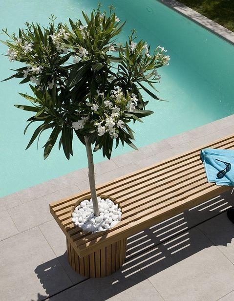Cap Sur L Exterieur Avec Images Exterieur Decoration Exterieur Mobilier De Salon