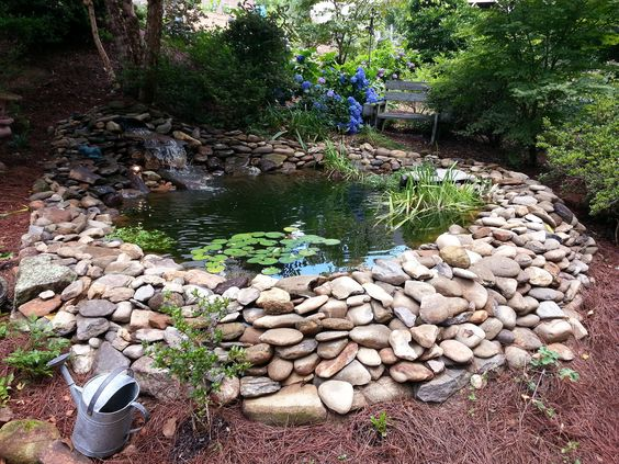 Lawn N Order Renovated What Once Was A 20 Pond Renovations Began With Emptying Out The