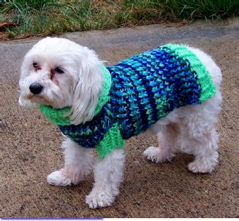 A nice looking free dog sweater pattern (with options for different sized dogs) for loom knitting / knifty knitter.