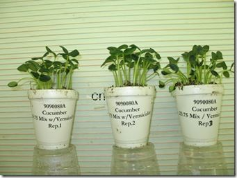 Have different types of soil and try to grow the same for Different types of soil for kids