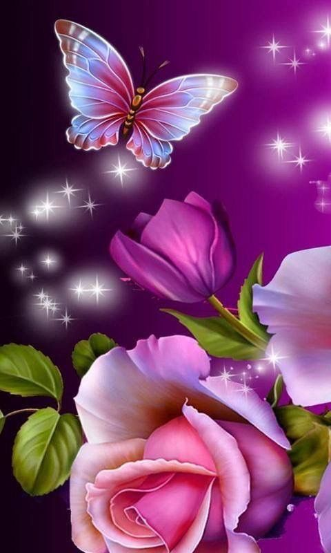 Pin By Veroncia Camacho On Flowers Flower Phone Wallpaper Butterfly Wallpaper Rose Wallpaper