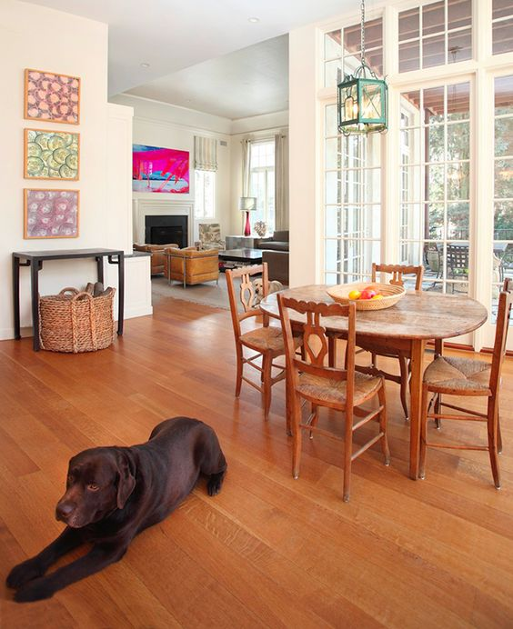 Ideas traditional and home on pinterest - Make house pet friendly ...