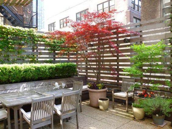 Sichtschutz ideen balkon terrasse holz spaliere kletterpflanzen ...