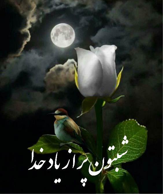 شب بخیر عاشقانه دوستانه و ادبی عکس نوشته شب بخیر مجله تصویر زندگی Beautiful Moon Beautiful Nature Moon Pictures