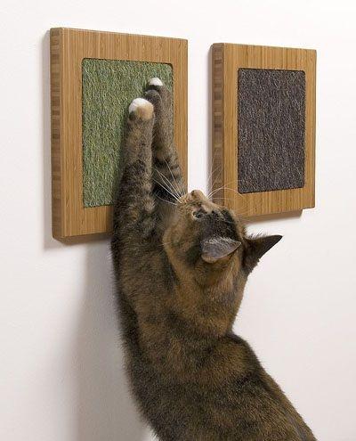 Gratoir chat tableau Maisons et jeux pour chats