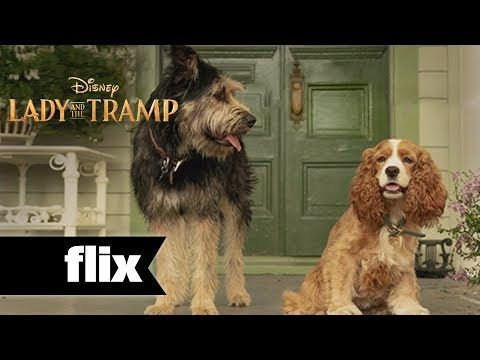 Lady The Tramp First Look 2019 Youtube Tramps Movie
