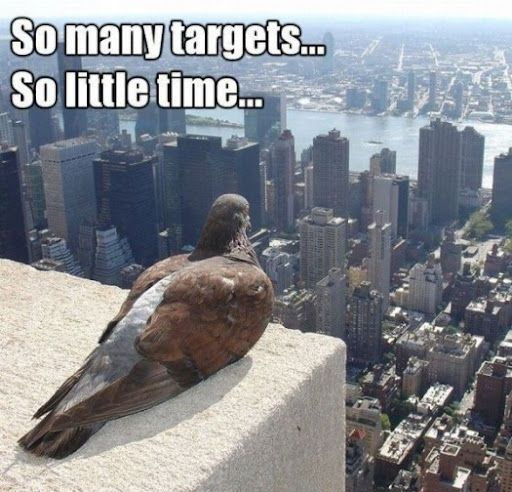 So many targets... so little time...