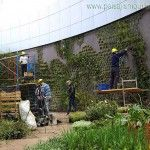 Jardines verticales Uruguay - Edificio Celebra, Montevideo