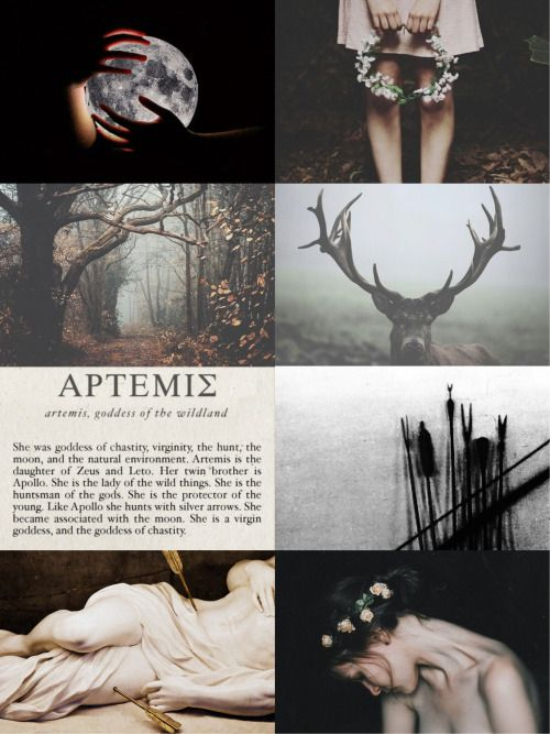 """Artemis ['Αρτεμις] is the daughter of Zeus and Leto and the twin sister of Apollo. She is the hellenic goddess of the hunt, archery, wild animals, forests and hills, and the moon.       Artemis was one of the most widely venerated of the Ancient Greek deities. Homer refers to her as """"Artemis of the wildland, Mistress of Animals"""". .     She was a huntress, depicted carrying a bow and arrows. The deer and the cypress were sacred to her. The moon is her symbol."""