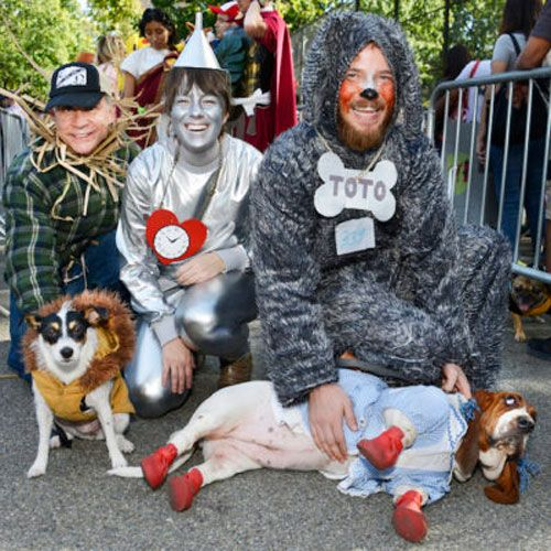 45 Epic Dog Halloween Costume Ideas 2020 Guide Dog Halloween