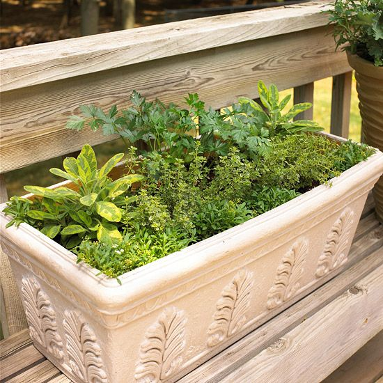 Herbal window box