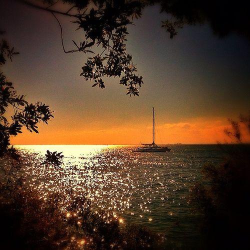 Sunset catamaran cruise. #keybiscayne #biking #bikeride #beautiful #exercise #fitness #miamilife #miami #305 #iheartsoflo #love #skyporn #skypainters #all_shots #all_sunsets #sunset_madness #fabshots #me #florida #instagood #instamood #insta_pick #iphoneo