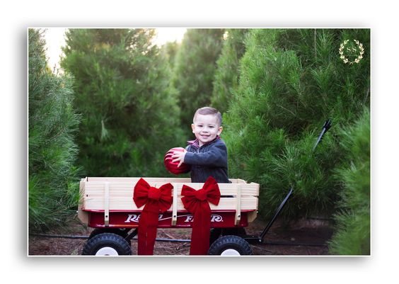 Christmas in a little red wagon, tree farm