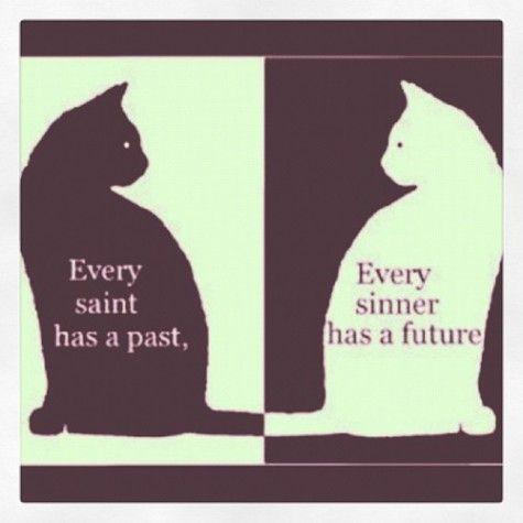 black cat, white cat: Black Cats, Saint Sinner, So True, Favorite Quotes, Yin Yang, White Cat, Oscar Wilde