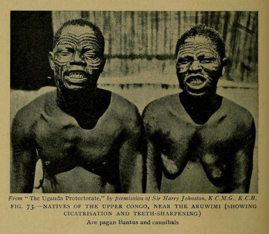 Natives of the Upper Congo, near the Aruwimi (showing cicatrisation and teeth-sharpening)