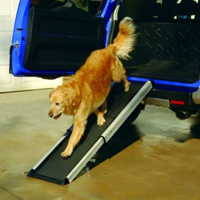 "Need a little help in getting your ""distinguished"" dog in and our of your vehicle?"
