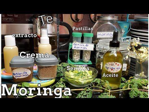 Como Hacer Aceite De Moringa Te Crema Pastillas Usos Y Propiedades Youtube Moringa Aceite De Aguacate Beneficios Aceite