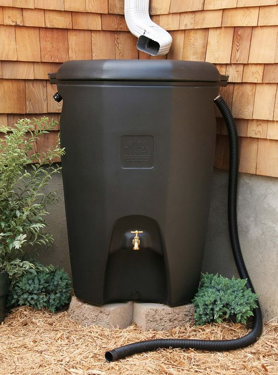 Rain Chains, Rain Gardens, and Rain Barrels are all very smart ways to both conserve water and save energy: