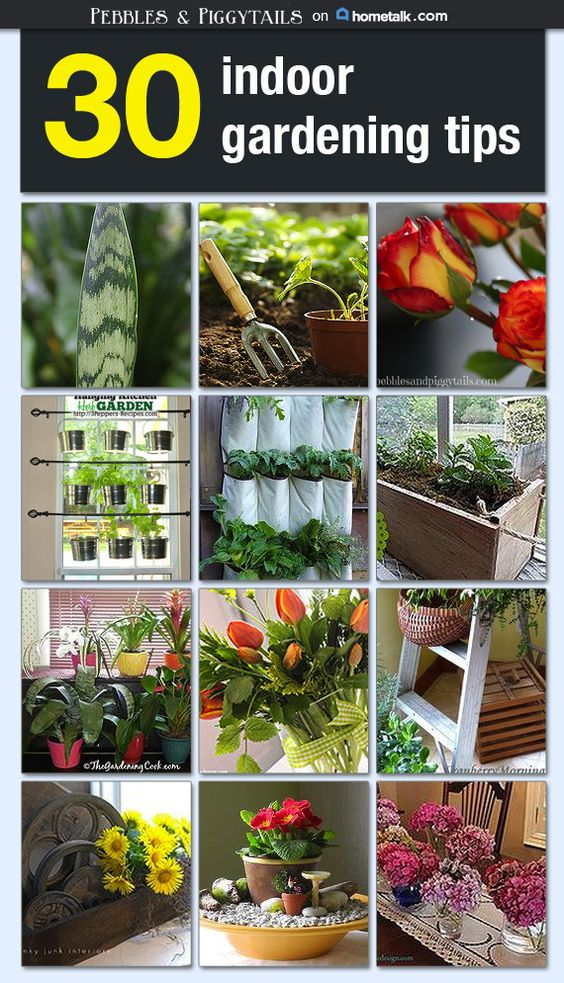 indoor gardening tips idea box by lisa making life