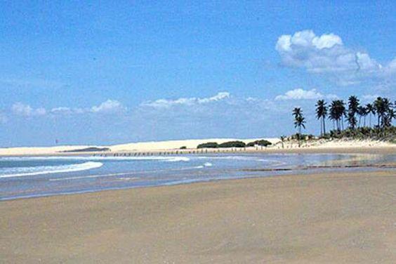 No extremo sul do litoral alagoano, próximo a Sergipe, a praia do Peba fica em Piaçabuçu, em uma áre... - Reprodução