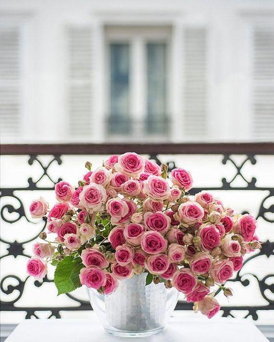 Roses on a Paris balcony: