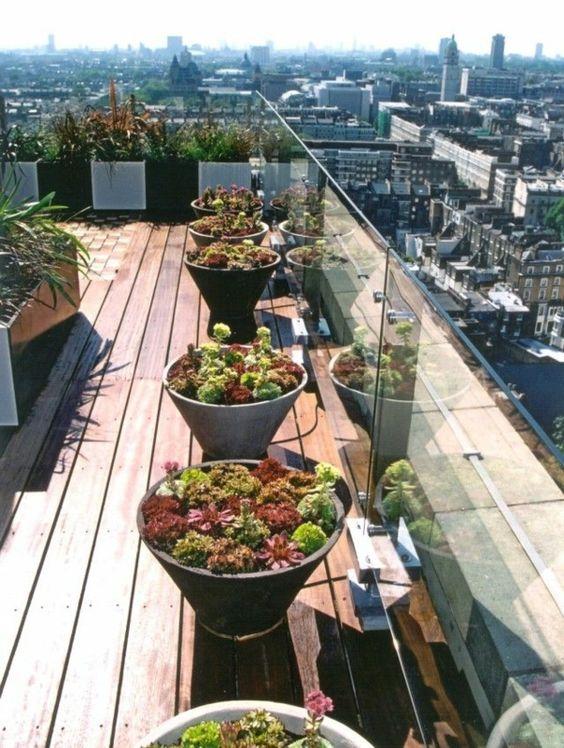 coole-Idee-für-die-Gestaltung-einer-Dachterrasse-mit-Pflanzen - dachterrasse gestalten umweltfreundliche idee