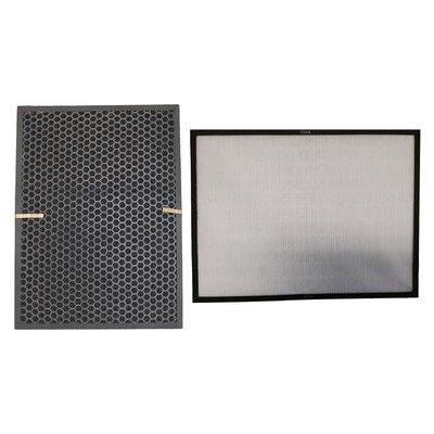 Crucial Air Filter and Carbon Filter