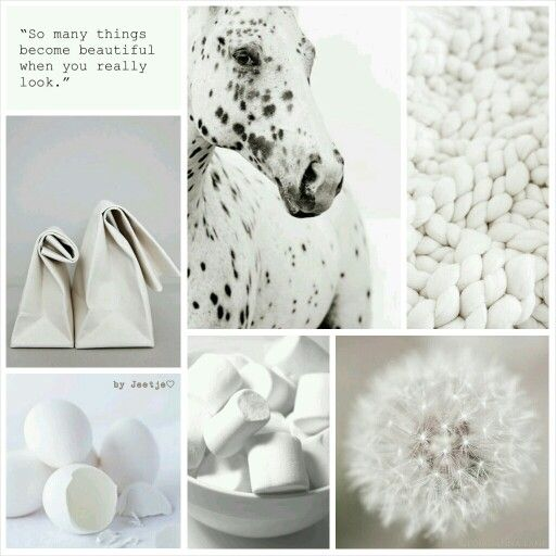 So many things become beautiful when you really look. #moodboard #mosaic #collage #inspirationboard #byJeetje♡