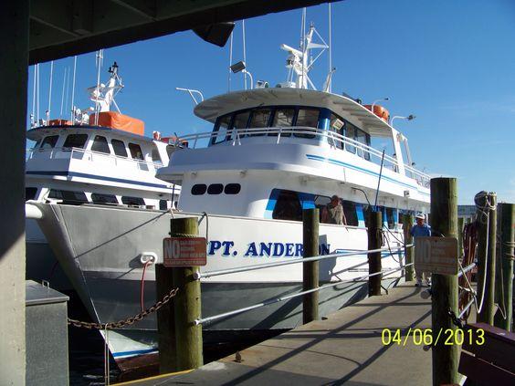 Deep Sea Fishing Deep Sea And Panama City On Pinterest