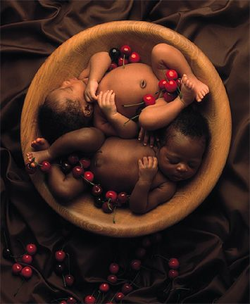 babies: Sleeping in a Cherry Bowl