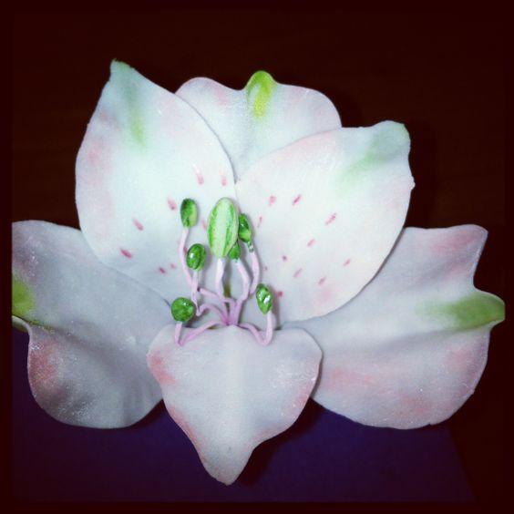 Blume aus Blütenpaste !