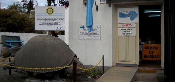 El Museo de Mar de Ajó continúa ofreciendo propuestas culturales abiertas a toda la comunidad. Mañana sábado a partir de las 18 se reunirán especialistas para brindar dos charlas vinculadas al medioambiente y la...