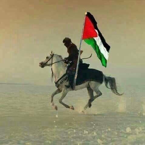 Pin On فلسطين