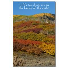 A beautiful picture highlights this poster.  $6.99 #posters #homedecor