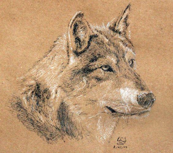 Wolf 001 by WillWorks.deviantart.com on @DeviantArt