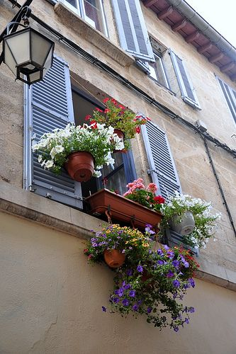 Provence http://lovely-notes.com/wordpress/