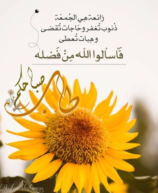 Pin By القيصر Abu Wesam On صباحكم ومسائكم دعاء Blessed Friday Holy Friday Jumah Mubarak